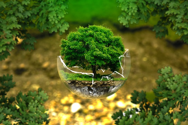 environmental protection 326923_640